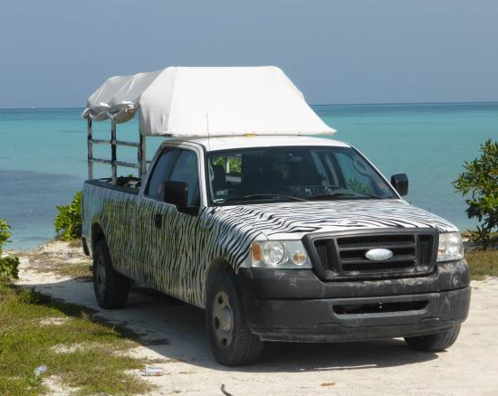 TCI Safari Tours