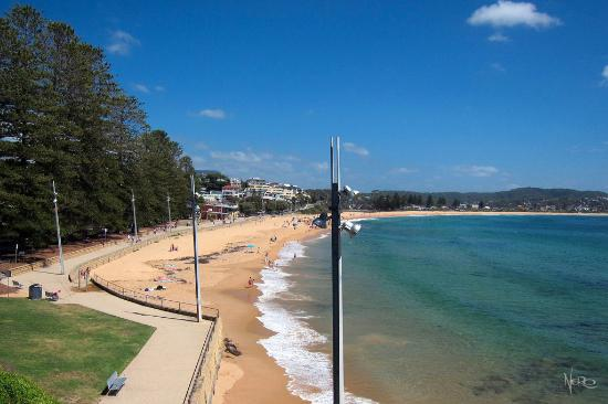 Terrigal Beach On A Bright Day