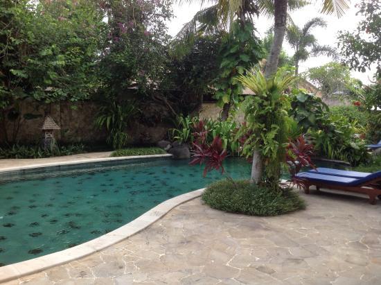 Samhita Garden Photo