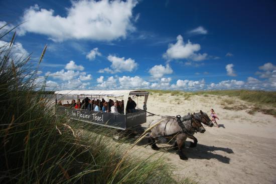 De Waal, Países Bajos: Dagelijks rijdt de Jan Plezier door de duinen en over het strand van de Slufter.