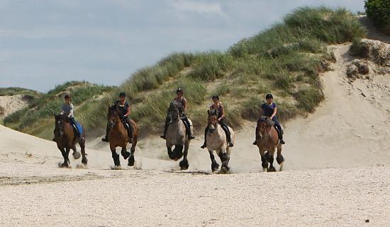 De Waal, Países Bajos: Heerljik galoperen over het strand van de Slufter!