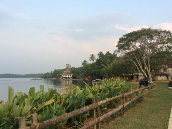 Aida Ayurveda & Holistic Health Resort: River side