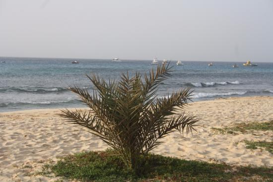 Praia de Santa Maria: Vacker strand