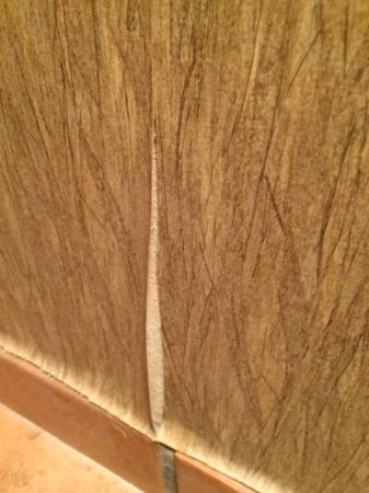 Avon, CO : Wallpaper peeling off of the walls, simple PM to correct issues.