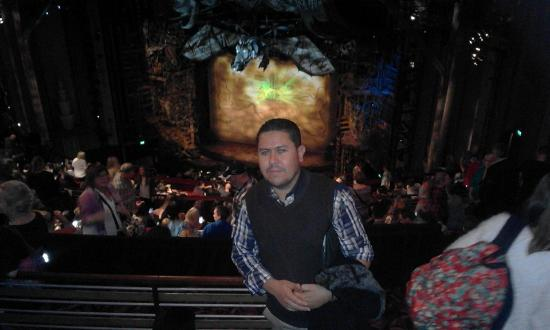 Wicked the Musical: amazing show : wicked ; Apolo victoria