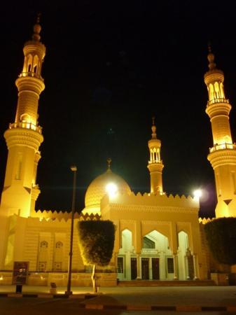 جامع الشيخ زايد الكبير: vista
