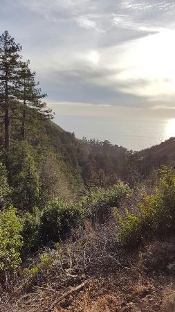 Julia Pfeiffer Burns State Park: 20151105_155412_large.jpg
