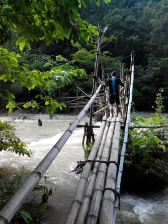Lapopu Waterfalls: jembatan menuju air terjun lapopu - jan 2016