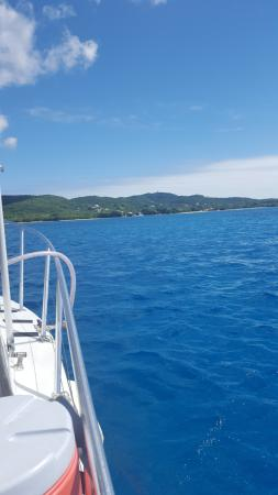 Christiansted, St. Croix: View from our dive site
