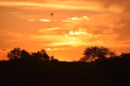 Victoria Falls Safari Club: Sunset