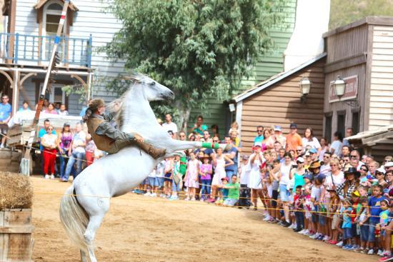 San Bartolome de Tirajana, Spagna: horse whisperer at sioux city park