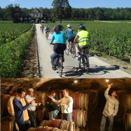 Bourgogne Evasion : Bike and Wine tours