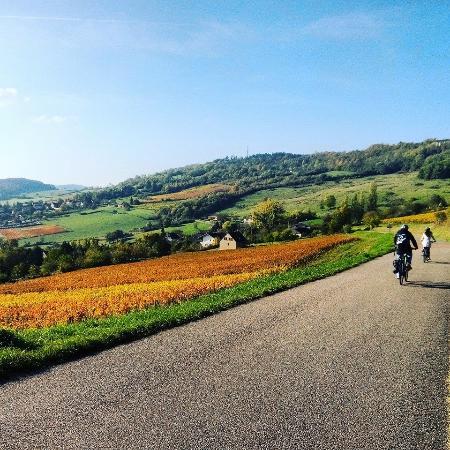 Bourgogne Evasion : Hautes Cotes de Beaune cycling