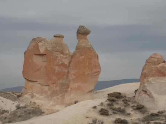 schö geformte Skulpturen - Picture of Camel Rock, Goreme ...