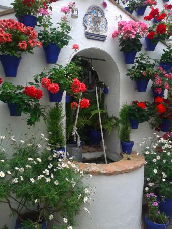 Patios de Córdoba: Pozo típico de un patio de Córdoba adornado con bellas macetas de gitanillas de varios colores