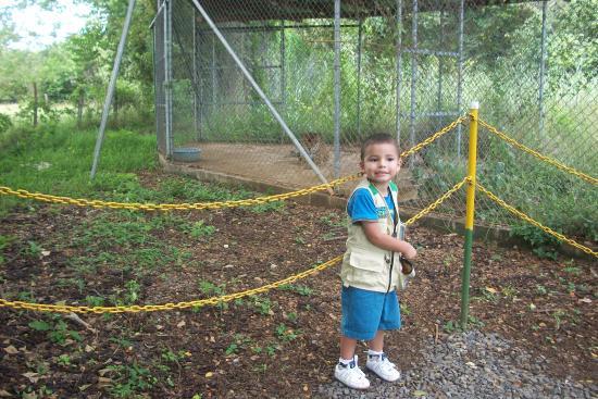 Canas, Коста-Рика: Santi con Tiggy al fondo
