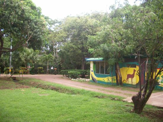 Canas, Коста-Рика: instalaciones