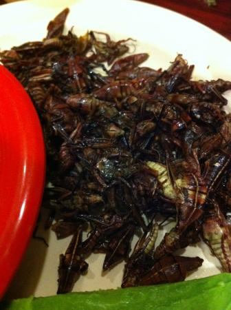 Чула-Виста, Калифорния: Grasshoppers