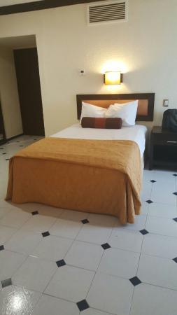Hotel El Conquistador : IMG-20160205-WA0025_large.jpg