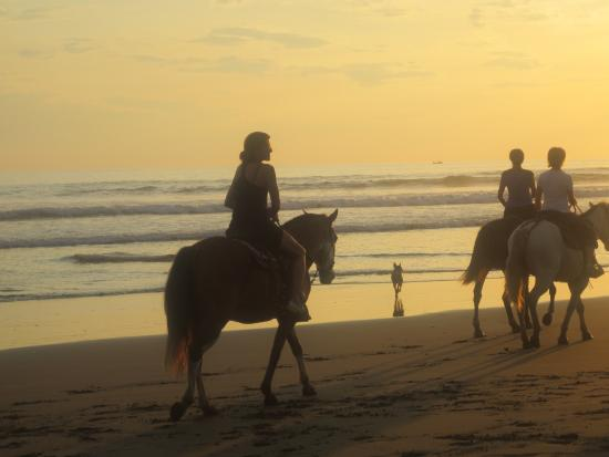 Esterillos Este, Costa Rica: Ride horses on the beach - so beautiful!