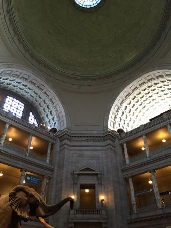 National Museum of Natural History: photo0.jpg