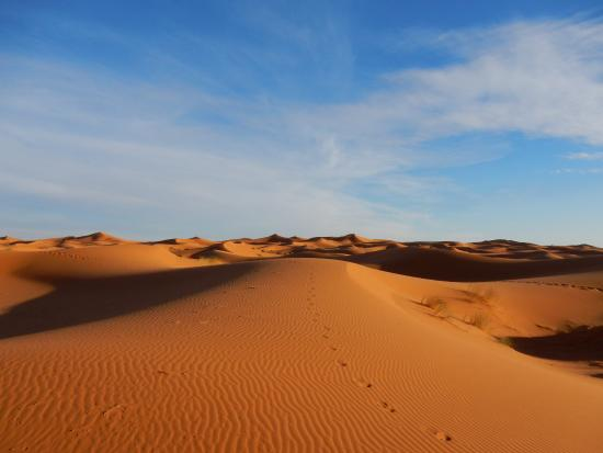 Morocco Excursions - Day Tours: Beautiful desert