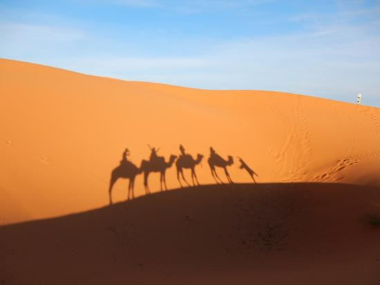 Morocco Excursions - Day Tours: Camel trekking