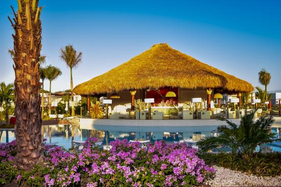 Club Med Punta Cana : New Zen Oasis - Hibiscus bar