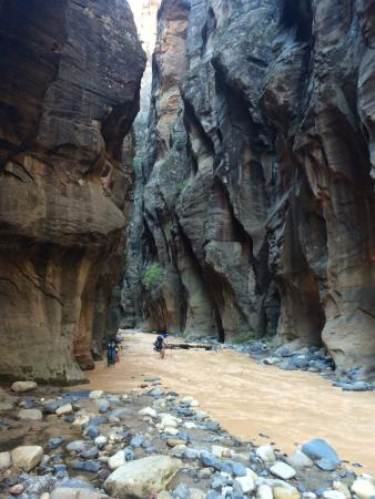 Springdale, UT: The Narrows