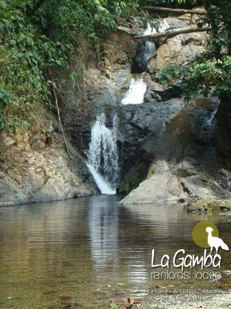 Golfito, Kostaryka: tour a cataratas