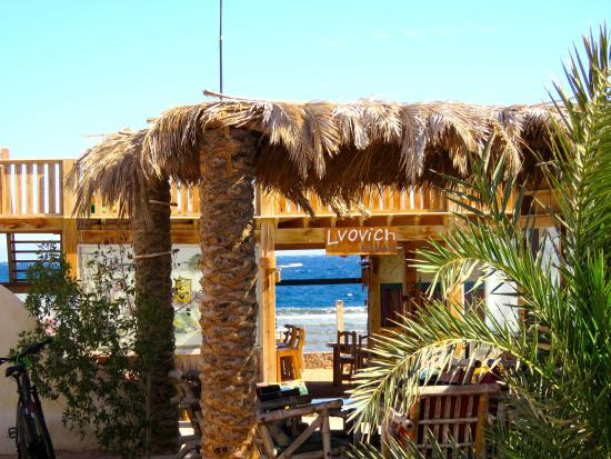 Marine Garden Camp: View from the rooms to the dive centre and oceanfront cafe
