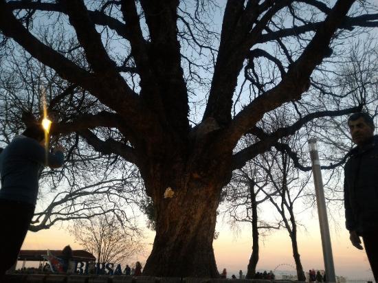 Osmangazi, Tyrkia: Bursa Clocktower