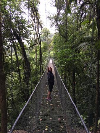 Grecia, Kosta Rika: Guest photo Arenal