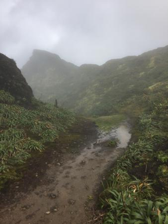 Parc National, Guadeloupe: photo1.jpg
