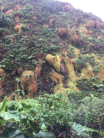 Parc National, Guadeloupe: photo2.jpg