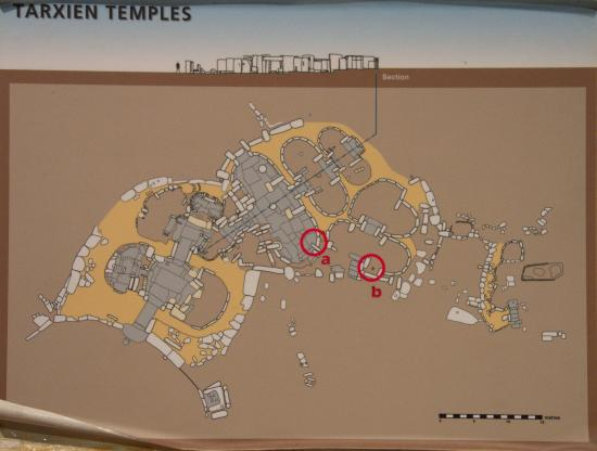 National Museum of Archaeology plan of Tarxien Temples Picture of