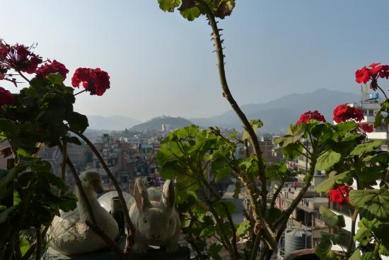 rosebud hotel resort kathmandu nepal foto s reviews en rh tripadvisor nl