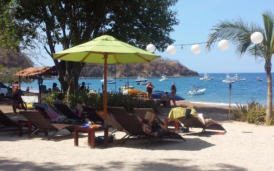 Playa Ocotal, Costa Rica: view from our table