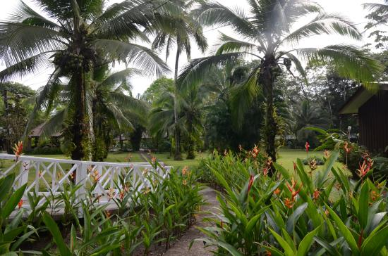 Laguna Lodge Tortuguero: A beautiful garden