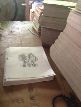 Kegalle, Σρι Λάνκα: Poo paper art