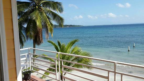 Carenero Island, Panama/Panamá: IMG-20160117-WA0005_large.jpg
