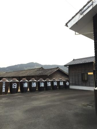 Nichinan, Giappone: photo0.jpg