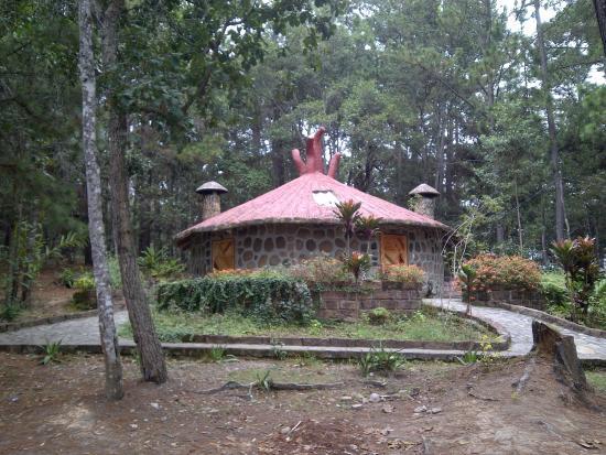 Foto de los pinos mountain resort la esperanza - Cabanas de madera los pinos ...