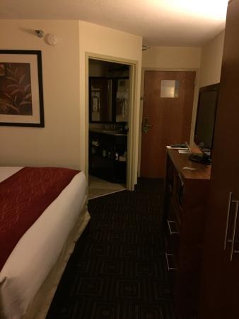 Comfort Inn: photo2.jpg