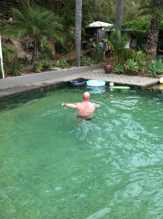 Hawkesbury Valley, Australia: Swimming pool at Peats Bite