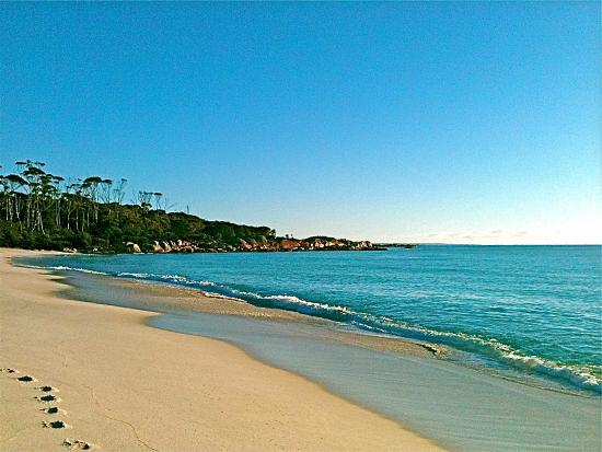 Short walk to Binalong Bay Beach