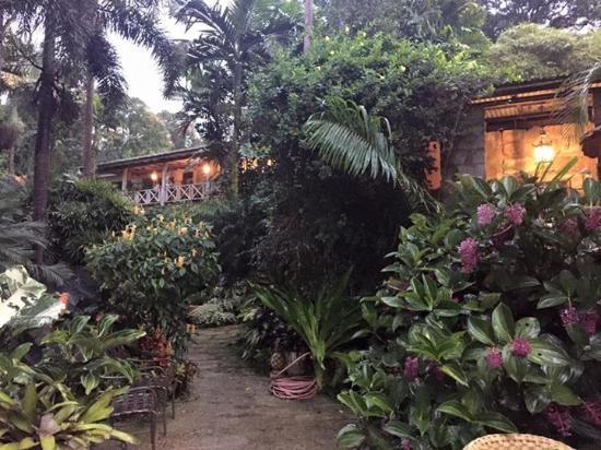 Hunte's Gardens: Mr Hunte's Veranda