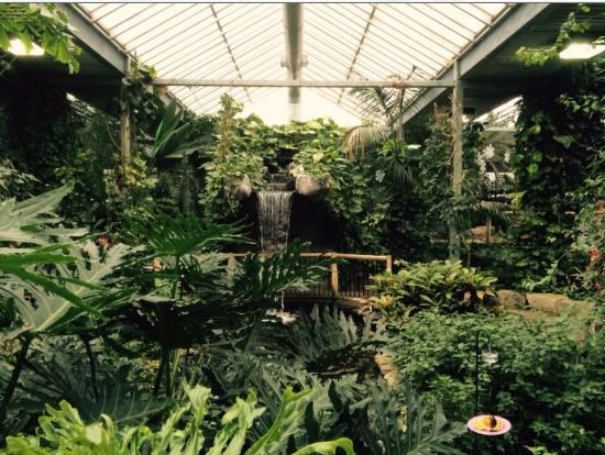 Cambridge, Canadá: inside the butterfly conservatory