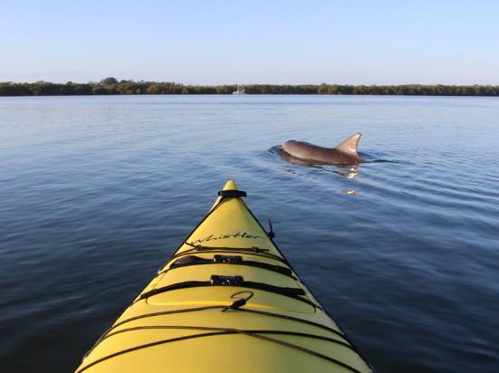 What a great kayaking trip kayak ballina ballina for Captain steve s fishing lodge