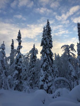 Kittilä, Finlandia: photo1.jpg